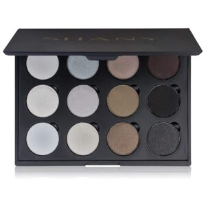SHANY Smokey Eyeshadow Palette